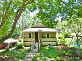 91  Cowan Cove Road  , Asheville, NC 28806 (#585619) :: Exit Realty Vistas
