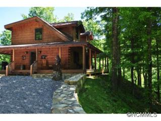 100  Mountain View Rd  , Hot Springs, NC 28743 (#585620) :: Exit Realty Vistas