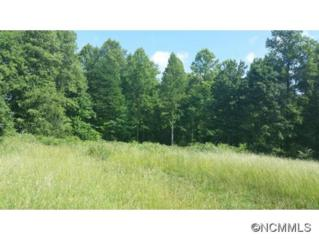 22  Crow Hollow Ln  , Flat Rock, NC 28731 (#585740) :: Exit Realty Vistas
