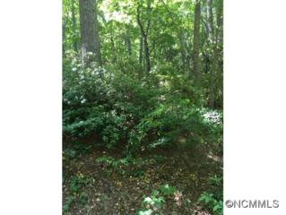 107  Deer Run Lane  , Asheville, NC 28805 (#585748) :: Exit Realty Vistas