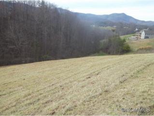 17  Jilmar Ct.  , Candler, NC 28715 (MLS #535280) :: Exit Realty Vistas