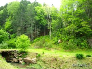 7381  Bear Creek Rd  , Marshall, NC 28753 (MLS #539411) :: Exit Realty Vistas