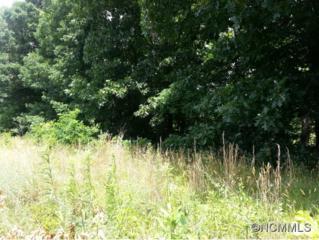 28  Lauren Ln  , Candler, NC 28715 (MLS #544334) :: Exit Realty Vistas