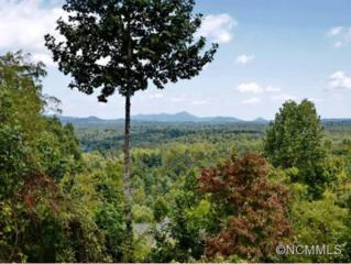 263  Highroad Overlook  , Flat Rock, NC 28731 (MLS #549021) :: Puffer Properties