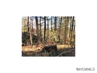 Lot 14  Toms Park Circle  , Hendersonville, NC 28791 (MLS #557292) :: Exit Realty Vistas