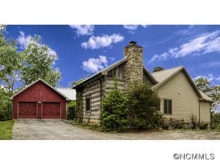 710  Burney Mountain Road  , Fletcher, NC 28732 (MLS #557347) :: Exit Realty Vistas