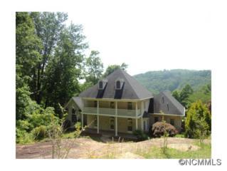 519  Brightwater Dr  , Hendersonville, NC 28739 (MLS #560233) :: Exit Realty Vistas