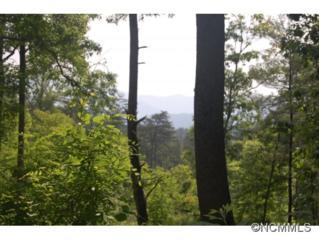 57 A  Fox Den Road  , Asheville, NC 28805 (#562942) :: Exit Realty Vistas