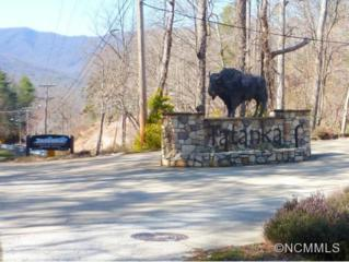 LOT 25  Wambli Pass  , Lake Lure, NC 28746 (MLS #565526) :: Washburn Real Estate