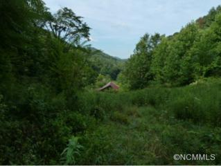 999  Metcalf Creek Loop  , Mars Hill, NC 28754 (MLS #569720) :: Exit Realty Vistas