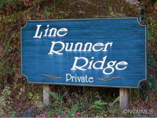 lot 5  Willow  , Rosman, NC 28772 (MLS #572484) :: Exit Mountain Realty
