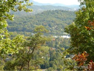 36  Lake Town Lane  , Asheville, NC 28804 (MLS #572554) :: Exit Realty Vistas