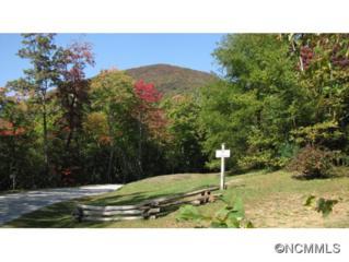 C-6  Eagle Drive  , Sapphire, NC 28774 (MLS #572995) :: Exit Realty Vistas