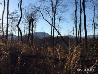 9999  Bills Creek Road  , Lake Lure, NC 28746 (MLS #574000) :: Caulder Realty and Land Co.