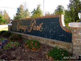 195  Carriage Crest Drive  , Hendersonville, NC 28791 (MLS #575207) :: Exit Realty Vistas