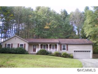 300  Meadowbrook Circle  , Brevard, NC 28712 (#575947) :: Exit Mountain Realty