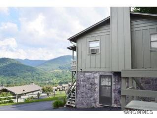 33  Flint Ln  , Maggie Valley, NC 28751 (MLS #576310) :: Exit Mountain Realty