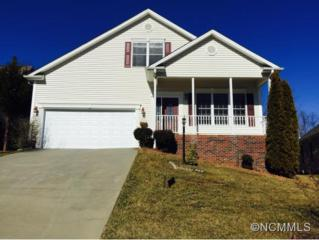 101  Willow Oak Dr  , Asheville, NC 28805 (MLS #576541) :: Exit Realty Vistas