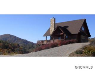 462  Dry Pond Road  , Marshall, NC 28753 (MLS #576613) :: Exit Realty Vistas