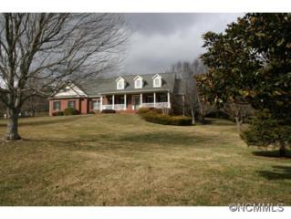 2004  Holly Tree Hill  , Hendersonville, NC 28739 (MLS #576820) :: Exit Realty Vistas