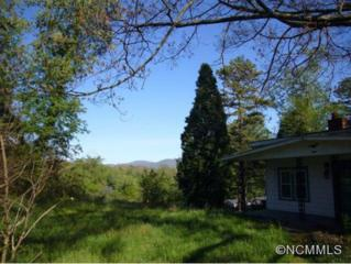 8  Pineview St.  , Asheville, NC 28806 (#578302) :: Exit Realty Vistas