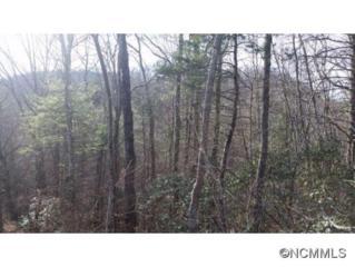 12  Wolf Knob  , Cullowhee, NC 28723 (#578425) :: Exit Realty Vistas