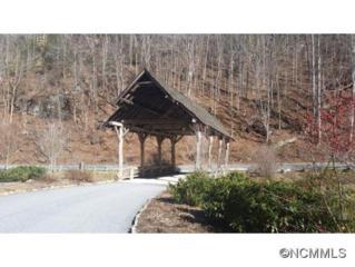 Lot 77  Royal Wulff Drive  , Cullowhee, NC 28723 (#578439) :: Exit Realty Vistas