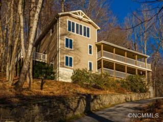1092  High Vista Drive  , Mills River, NC 28759 (#579162) :: Exit Realty Vistas
