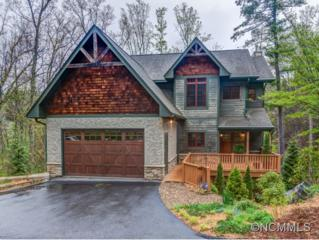 42  Woodhaven Road  , Asheville, NC 28805 (#581843) :: Exit Realty Vistas