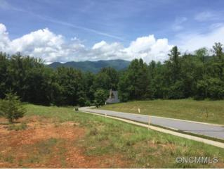 28  Cottage Settings Ln  , Black Mountain, NC 28711 (#585469) :: Exit Realty Vistas