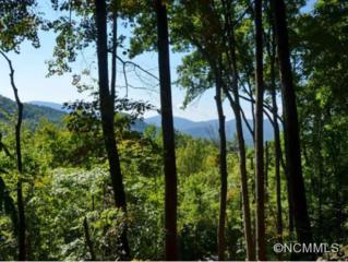 0000  E. Sondley Drive  , Asheville, NC 28805 (MLS #548682) :: Exit Realty Vistas
