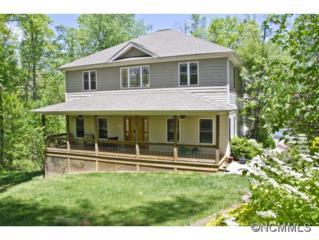 412  Golden Rod Lane  , Candler, NC 28715 (#561378) :: Exit Realty Vistas