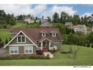 17  Woods Crossing Way  , Weaverville, NC 28787 (#565602) :: Exit Realty Vistas