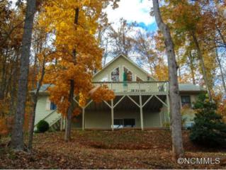 8  Vista Lane  , Mills River, NC 28759 (MLS #567274) :: Exit Realty Vistas