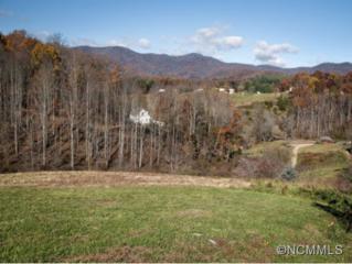 31  Lauren Lane  , Candler, NC 28715 (MLS #573686) :: Exit Realty Vistas