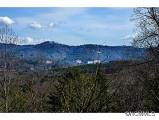 54,44,65  Timber Moss Drive  , Asheville, NC 28804 (MLS #576352) :: Exit Realty Vistas