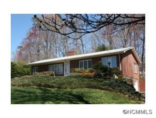 690  Monte Vista Rd  , Candler, NC 28715 (#578522) :: Exit Realty Vistas