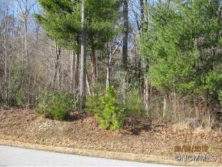 157  Cold Stream Way  , Hendersonville, NC 28791 (#578573) :: Exit Realty Vistas