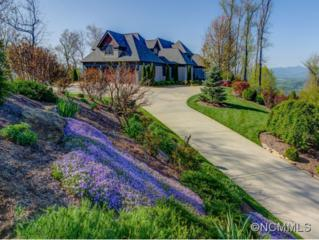 675  Altamont View  , Asheville, NC 28804 (#579543) :: Exit Realty Vistas