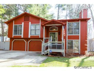 7  Turkey Toe Lane  , Arden, NC 28704 (#579634) :: Exit Realty Vistas