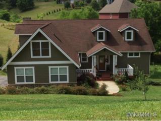 17  Woods Crossing Way  , Weaverville, NC 28787 (#565602) :: Exit Realty Vistas