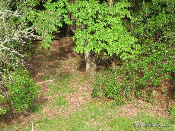 Lot 86 N Running Deer Trail - Photo 1