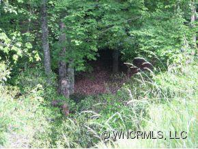 Lot 86 N Running Deer Trail - Photo 3