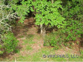 Lot 86 N Running Deer Trail - Photo 5