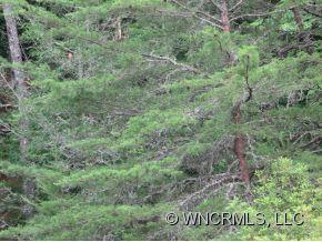 Lot 86 N Running Deer Trail - Photo 6