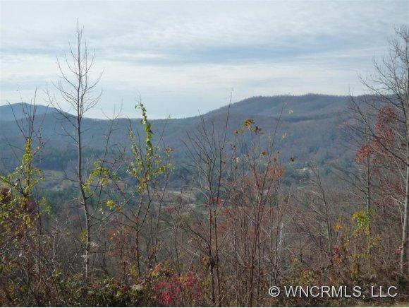 204 Rambling Trail - Photo 1
