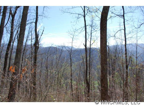 0000 Williams Branch Road - Photo 10