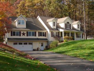 33  Tiffany Lane  , Wallkill, NY 12589 (MLS #4408536) :: The Lou Cardillo Home Selling Team
