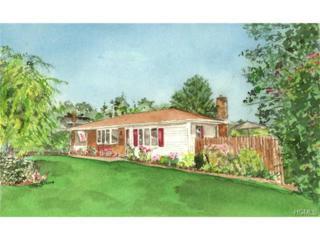 8  Buena Vista Avenue  , Peekskill, NY 10566 (MLS #4428584) :: The Lou Cardillo Home Selling Team