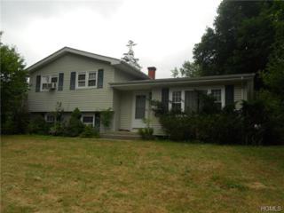 25  Merriewold Lane  , Monroe, NY 10950 (MLS #4430917) :: William Raveis Baer & McIntosh